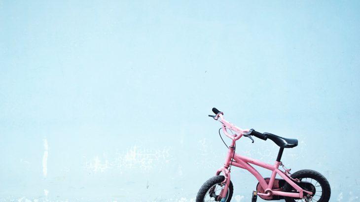 【東条湖おもちゃ王国周辺】子ども連れが楽しめるおすすめスポット5つ