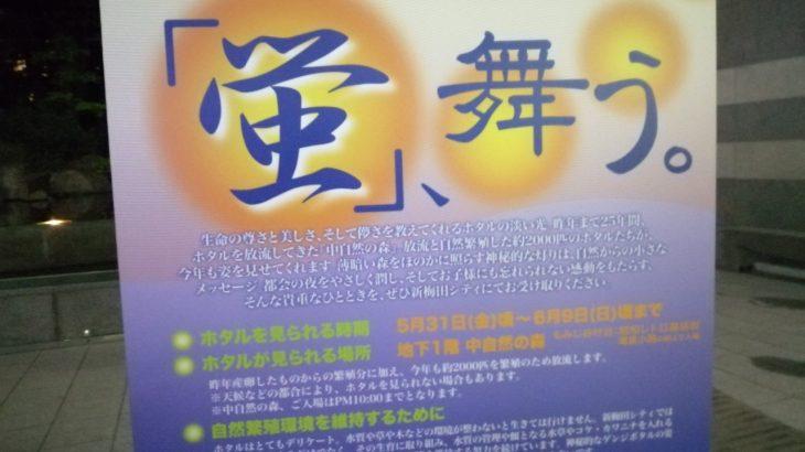 【新梅田シティ・中自然の森】 都会のオアシスに放たれるホタルで初夏を感じよう!